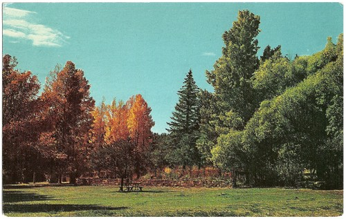 Hummingbird Music Camp, Jemez Springs, New Mexico The music and recreational camp is nestled along the banks of the beautiful Jemez River in the heart of the Jemez Valley among the tall pines and towering peaks. Color by Don Kolkmeyer/Distributed by Southwest Post Card Co.