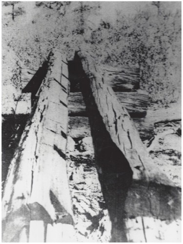 Log Chute, Cobra Canyon, 1922