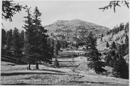 San Antonio Mountain in Jemez--Bond Cattle Ranch.Used with permission from files of Sandoval County Historical Society.